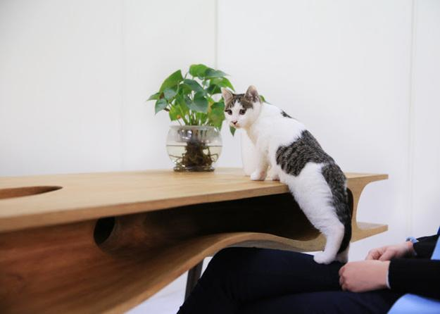 modern tables, solid wood writing desk with cats tunnels