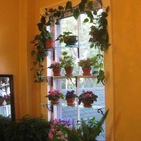 Plant Shelf Ideas Outdoor