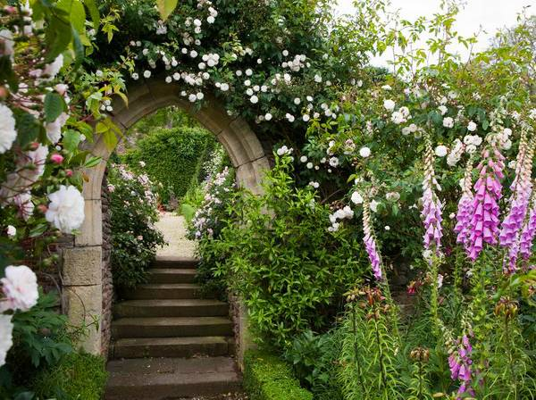Shade Garden Plants Landscaping Ideas Beautiful