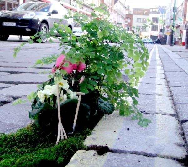 yard landscaping ideas for potholes and cracks