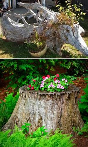 20 Root Artworks And Yard Decorations Bringing Natural