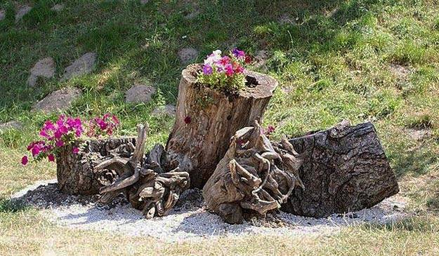20 Root Artworks And Yard Decorations Bringing Natural