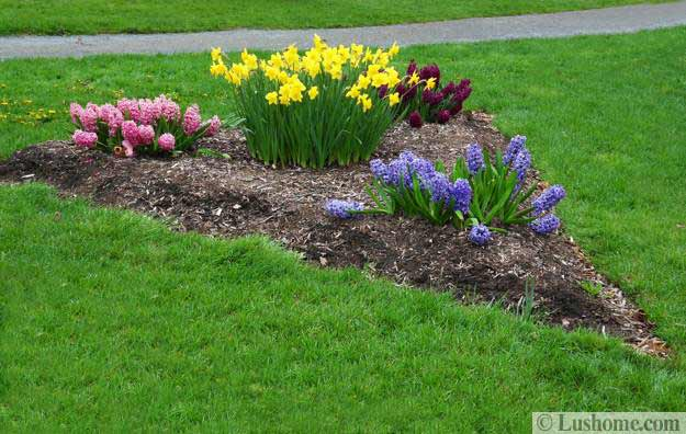 spring garden design ideas, beautiful flowers and flower beds