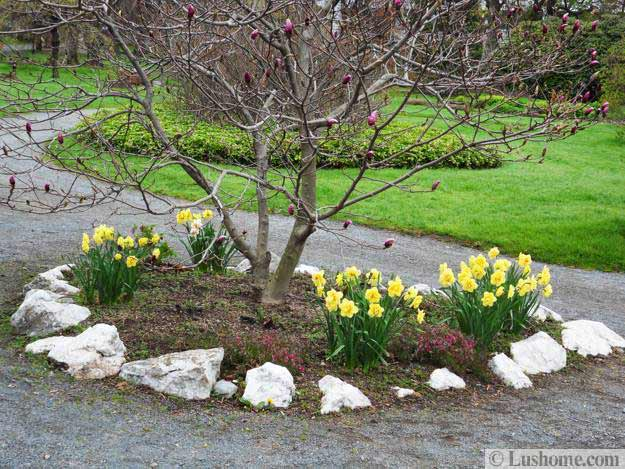 Spring garden design 25 spring flower beds and yard landscaping ideas mightylinksfo