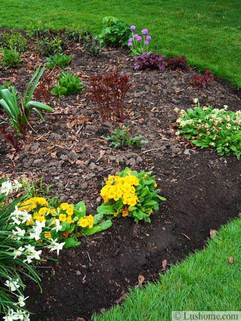 Spring Garden Design, 25 Spring Flower Beds and Yard ...