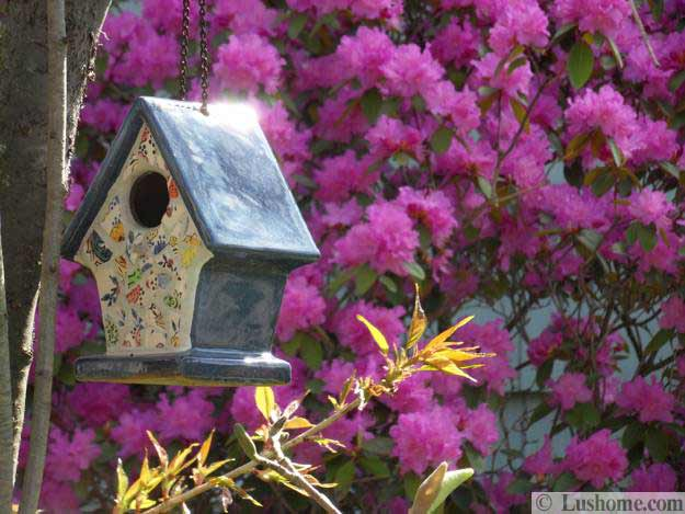 20 Spring Yard Landscaping Ideas And Beautiful Garden Decorations