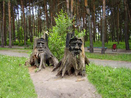 Ideas to recycle tree stumps for garden art and yard