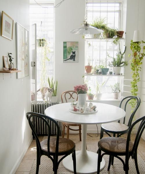 Small Space Dining Room: 25 Creative Window Decorating Ideas With Open Shelves