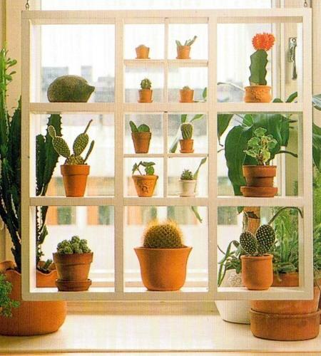 Kitchen Window Plant Shelf: 25 Creative Window Decorating Ideas With Open Shelves