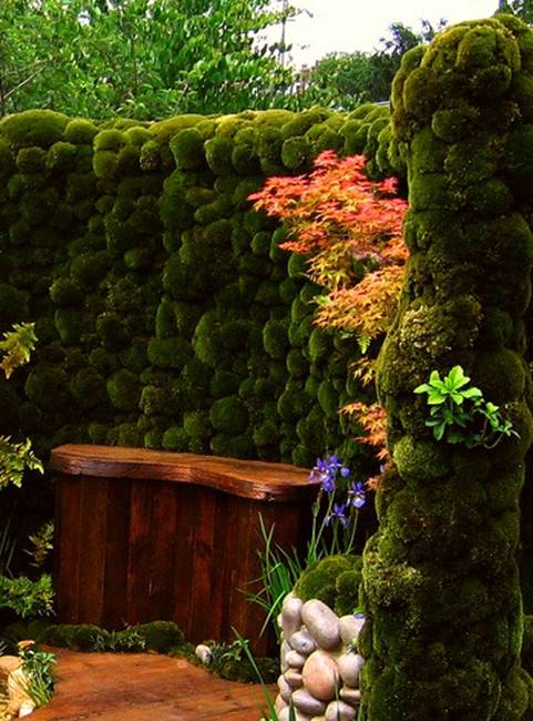 40 Green Fence Design Ideas Yard Landscaping And