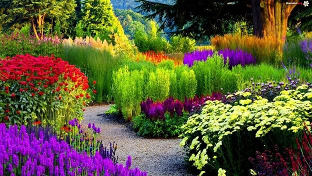 Invisible Flower Bed Borders For Natural And Beautiful