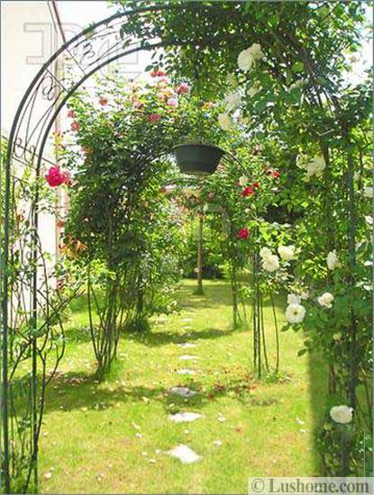 20 Metal Arches And Beautiful Yard Landscaping Ideas