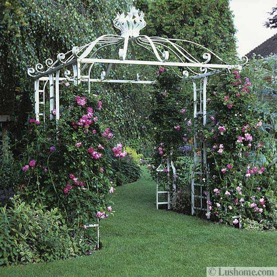 Metal Garden Arches And Pergolas Garden Inspiration