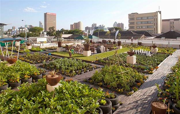 A Rooftop Garden On A Building Across The Street From The International  Convention Centre In Durban, South Africa, The Urban Rooftop Garden