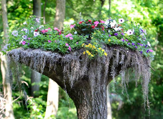 60 Impressive Stumpery Garden Decorations, Creative and Natural ...