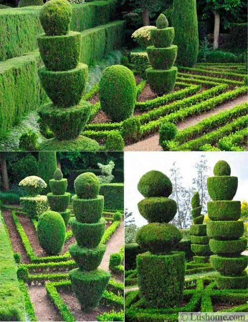 25 And 30 New Topiary Ideas Great Decorative Plants To Beautify