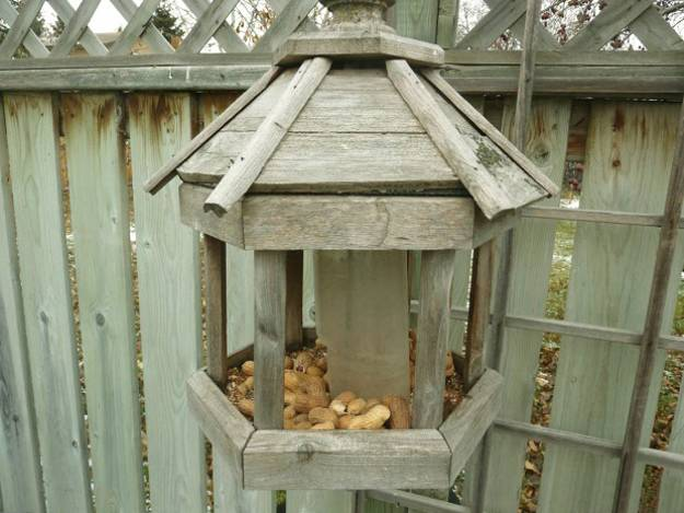 Inspiring Design Ideas For Recycled Crafts To Make Bird
