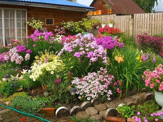 Summer Flowers For Colorful Outdoor Home Decorating