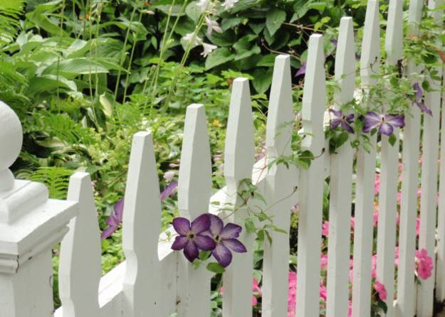 fencing materials and landscaping ideas