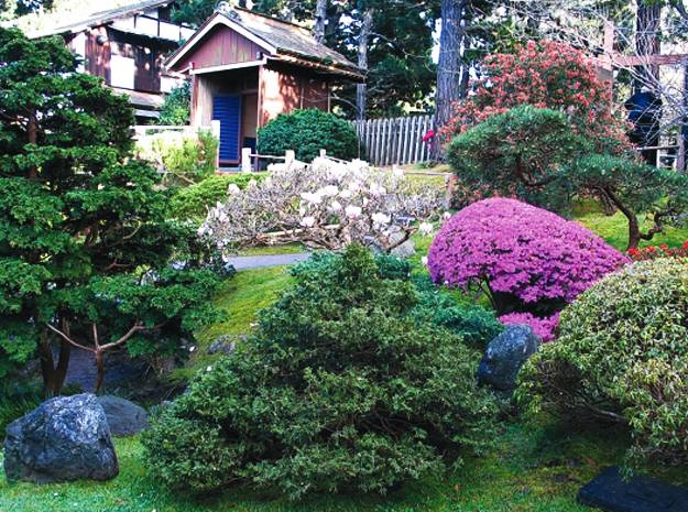 Gardens With Magnolia Trees 25 Healing Backyard Ideas To Feng Shui