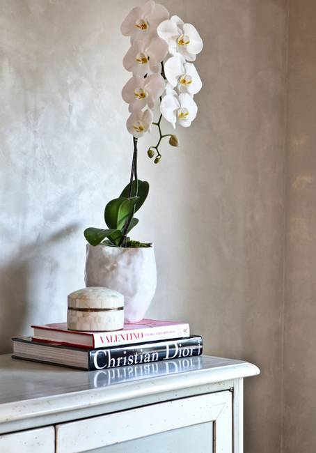 sophisticated orchids for elegant interior decorating and home staging