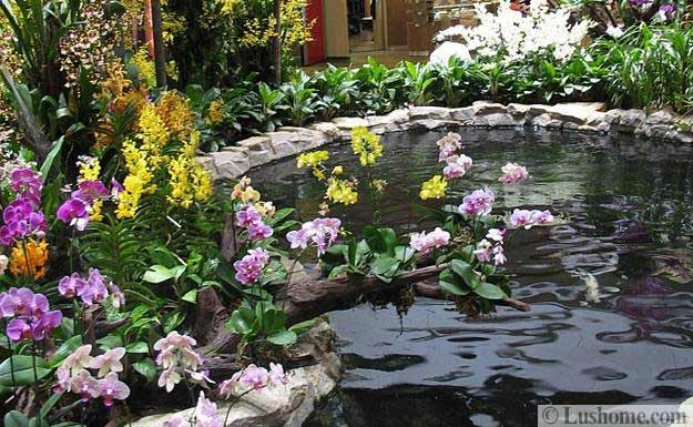 30 Beautiful Ideas For Exotic Garden Design And Backyard