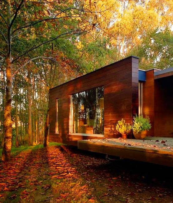Interior House Colors House Front Design: Fall Colors Beautify Modern Houses And Landscape
