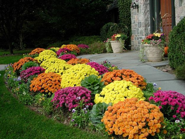 fall garden design and yard landscaping ideas