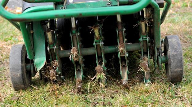 Fall Gardening Tools For Yard Landscaping While Enjoying