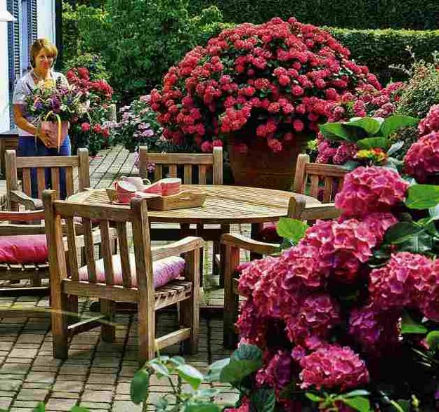 20 Unique Garden Design Ideas To Beautify Yard Landscaping: 20 Ideas For Outdoor Home Decorating With Hydrangeas
