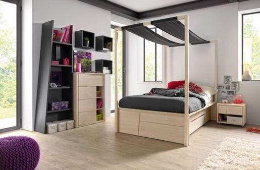 Modern ideas for canopy beds in contemporary style & 20 Canopy Beds for Kids Room Design