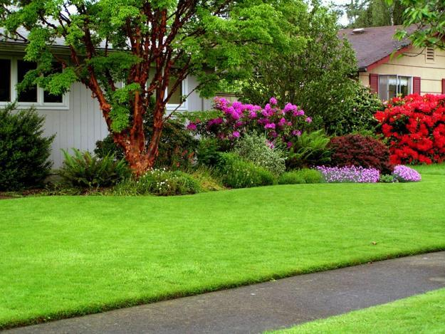 green lawn and backyard landscaping ideas