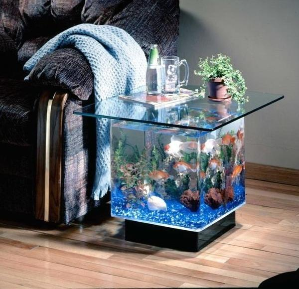Home Aquarium Design Ideas: Useful Tips For Successful Interior Decorating With Aquariums