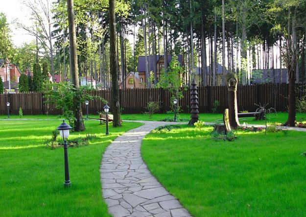 25 Yard Landscaping Ideas Curvy Garden Path Designs To
