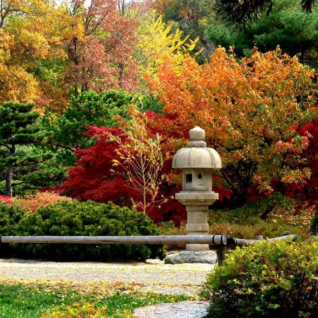 fall colors and autumn leaves for outdoor home decorating
