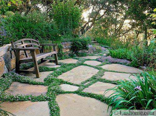 Beautiful Garden With Stone Path