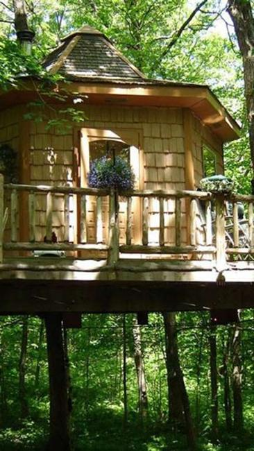 green ideas for eco friendly vacation in cabins