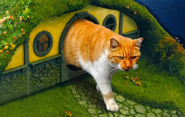 pet furniture design inspired by lord of the rings