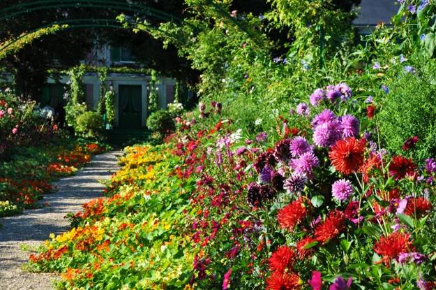 Home Design Ideas Decorating Gardening: Growing Bright Edible Flowers For Outdoor Home Decorating