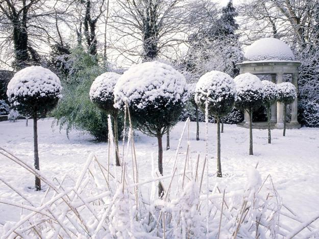 21 Beautiful Winter Gardens With Snow Capped Plants And Smart Layout Design