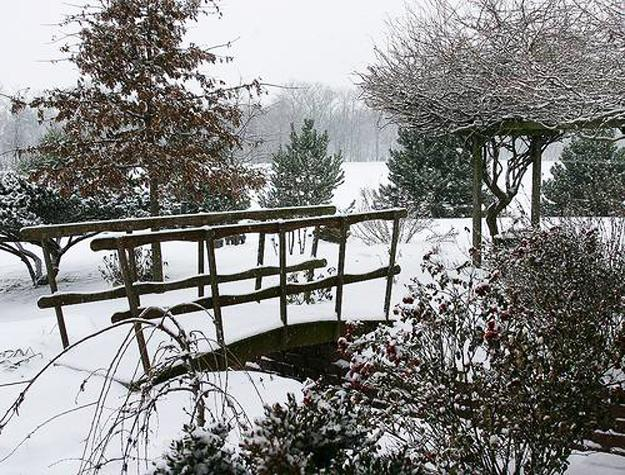 21 Beautiful Winter Gardens With Snow Capped Plants And