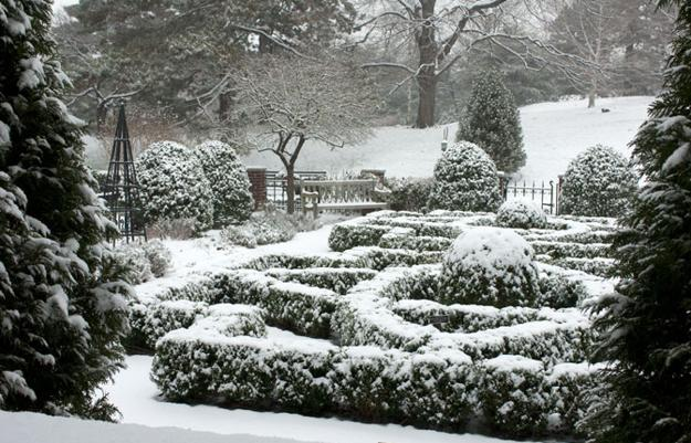 winter yard landscaping ideas