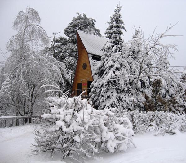 winter snow, country homes and landscapes