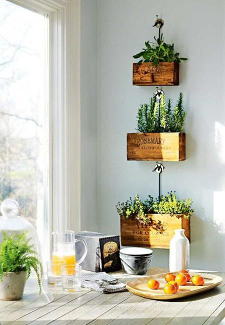Low maintenance modern interior decorating with house plants - Interior decorating with plants ...