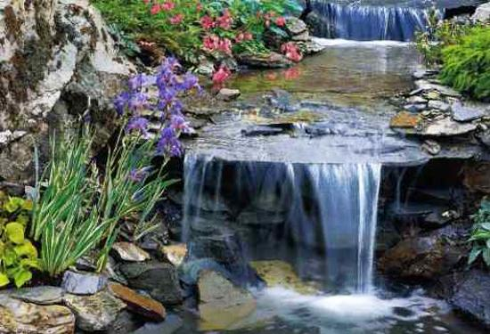 Small Pond Designs With Waterfalls