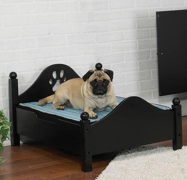 Home Decor Ideas Furniture Garden Pet Bed Rooms Beauty