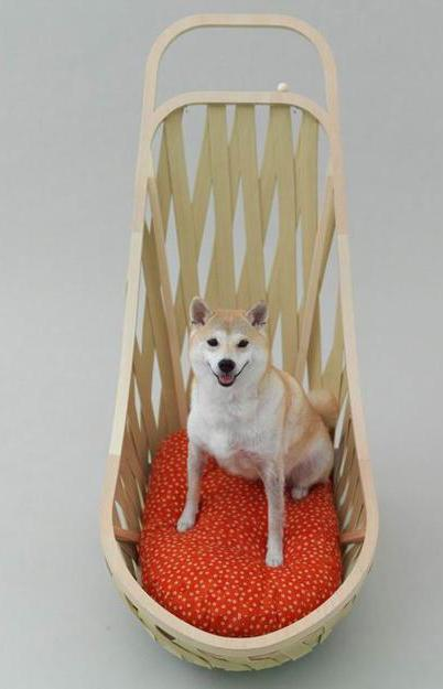 modern pet beds designs for small dogs