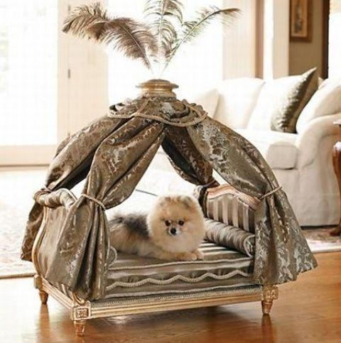 20 Modern Pet Beds Design Ideas For Small Dogs
