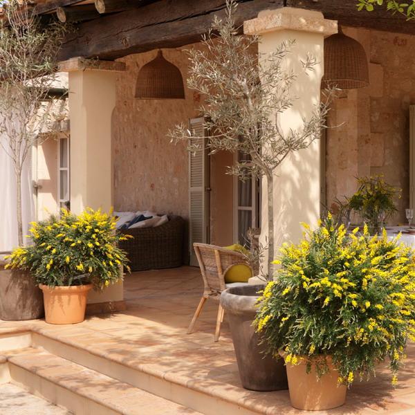 Mediterranean Patio Ideas Backyards