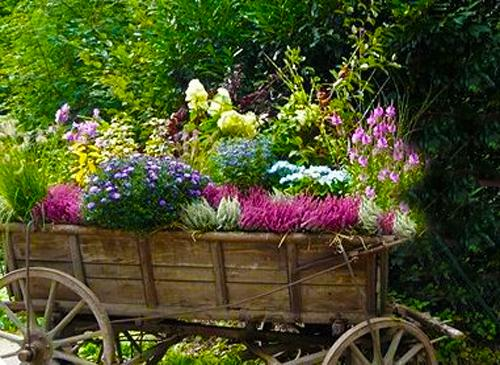 15 Unusual Flower Beds And Container Ideas For Beautiful